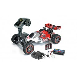 RTRe 1/10 2wd R/C buggy 2.4Ghz