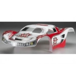 1/8 BR50 truggy body painted