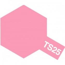 Acryl spuitbus plastics pink TS-25 100ml.