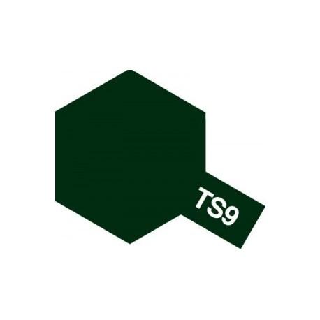 Acryl spuitbus plastics british green TS-9 100ml.