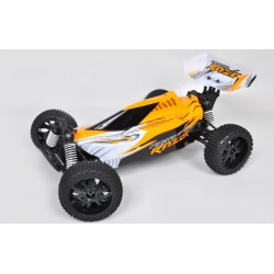 RTRe 1/9 4x4 buggy 2.4Ghz