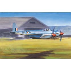 DE HAVILLAND HORNET F.1 1/48