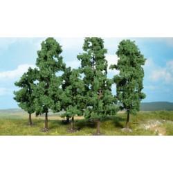 Heki loofboom 12-18cm p/st.