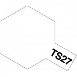 Acryl spuitbus plastics matt white TS-27 100ml.