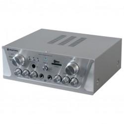 2x50W versterker FM/USB/SD karaoke (2x micr)