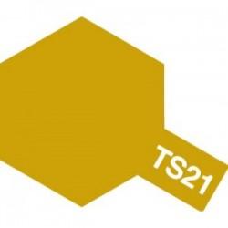 Acryl spuitbus plastics gold TS-21 100ml.