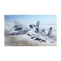 A-10C BLACKSNAKES 1/48
