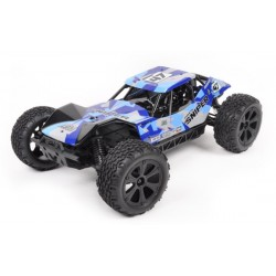 RTRe 1/10 brushless 4x4 buggy