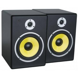PD set 5'active speakers