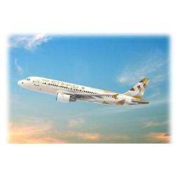 GESCHENKSET AIRBUS A320 ETIHAD 1/144 26X24CM