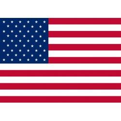 amerikaanse vlag 20x30 mm