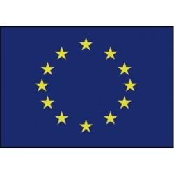 Europese vlag 20x30 mm