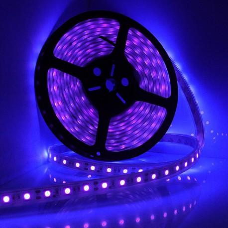 UV (blacklight)  LEDstrip per meter 12V/ 600mA