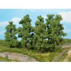 Heki fruitbomen 9-11cm 4st.