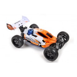 RTRb 1/9 4x4 buggy 2.4Ghz