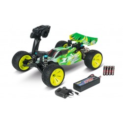 1/10 2WD buggy komplete set 2.4Ghz