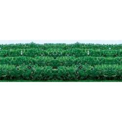 Haag 2x2,54x15cm 4st.