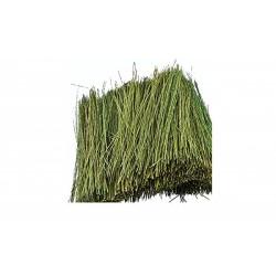 Field grass 15gram
