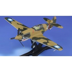 GEBOUWDE P40 FLYING TIGER 1/48
