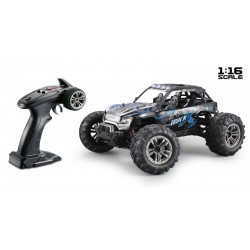 RTRe 1/16 Brushed RC Buggy 4WD 2.4Ghz zw/bl
