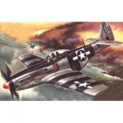 MUSTANG P-51K WWII 1/48